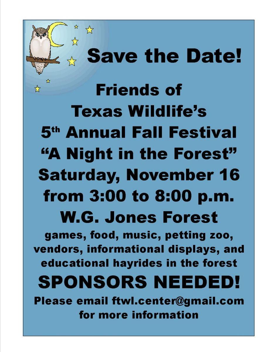 2013 ff flyer