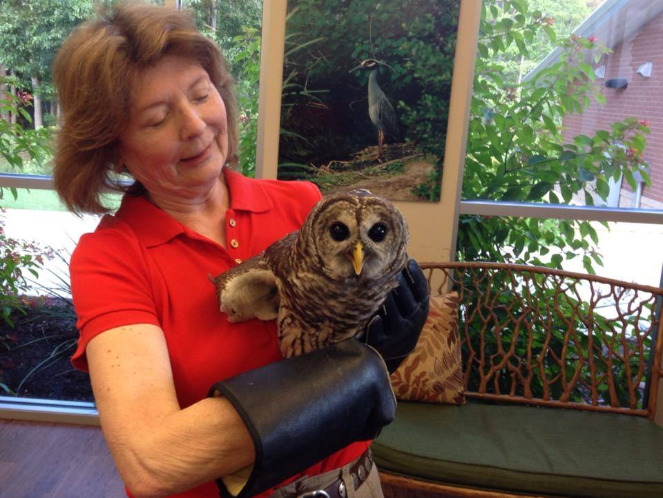 10-4 greenway owl release janette
